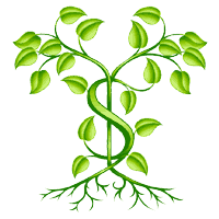 See My Savings Grow Spell
